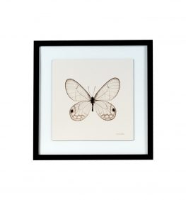 Cuadro Butterfly I